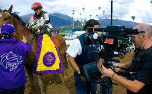 Breeders Cup Steadicam 2014 | AVS Aerial Video Systems